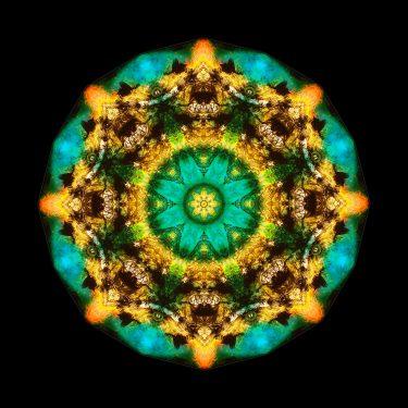 Colors 5 375x375 - Colors