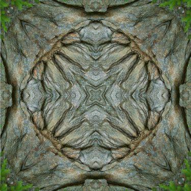 nature 15 375x375 - Natur