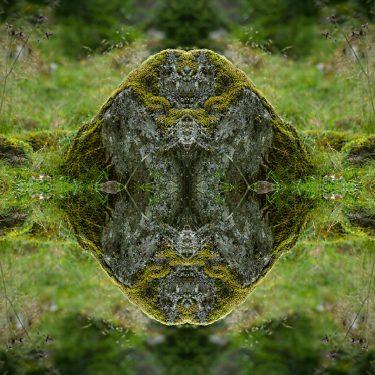 nature 17 375x375 - Natur