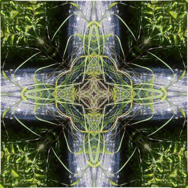 nature 21 375x375 - Natur