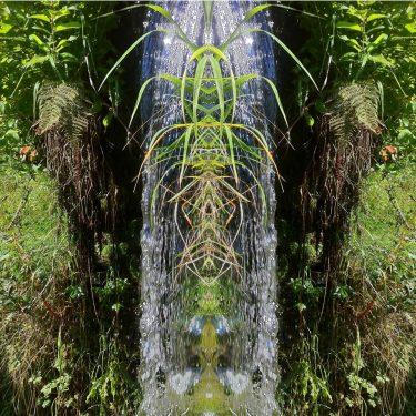 nature 25 375x375 - Natur