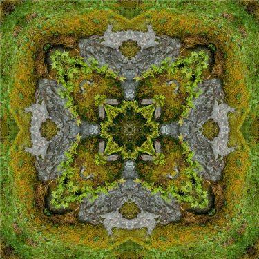 nature 32 375x375 - Natur