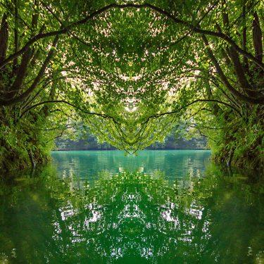 nature 5 375x375 - Natur