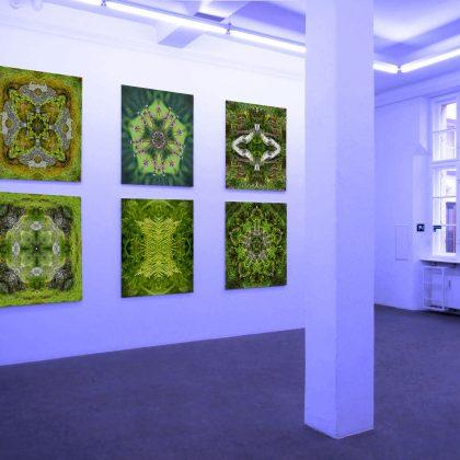 mandalicht demo Galerie 02 420x420 - Galerie Home
